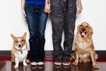 Dating Humor: Dog Wars